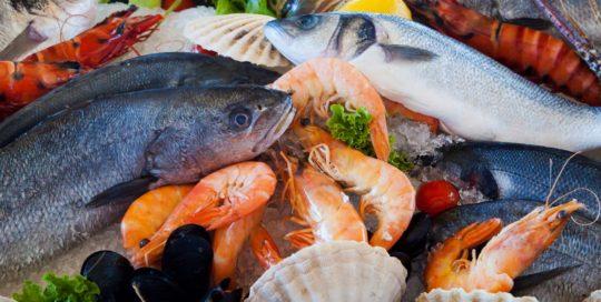 Planes de prerrequisitos industria alimentaria