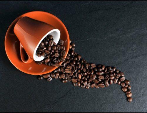 Trazabilidad del café