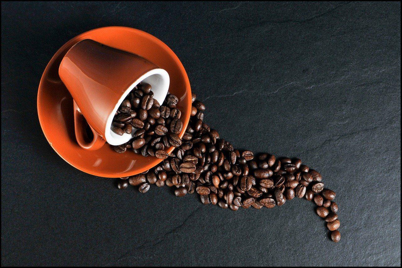 trazabilidad-del-cafe